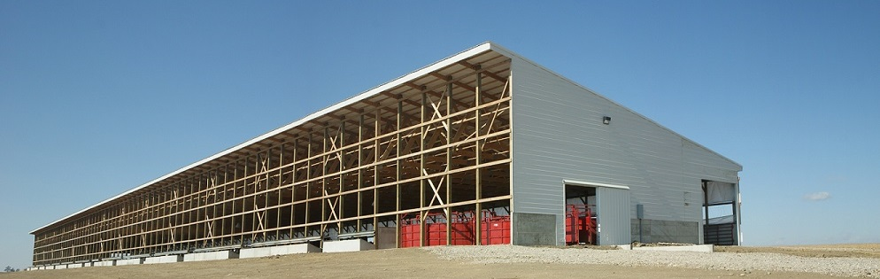 New Cattle Barns