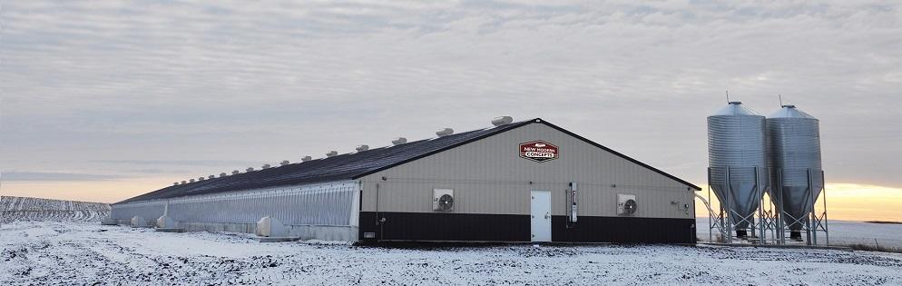 New Swine Barns