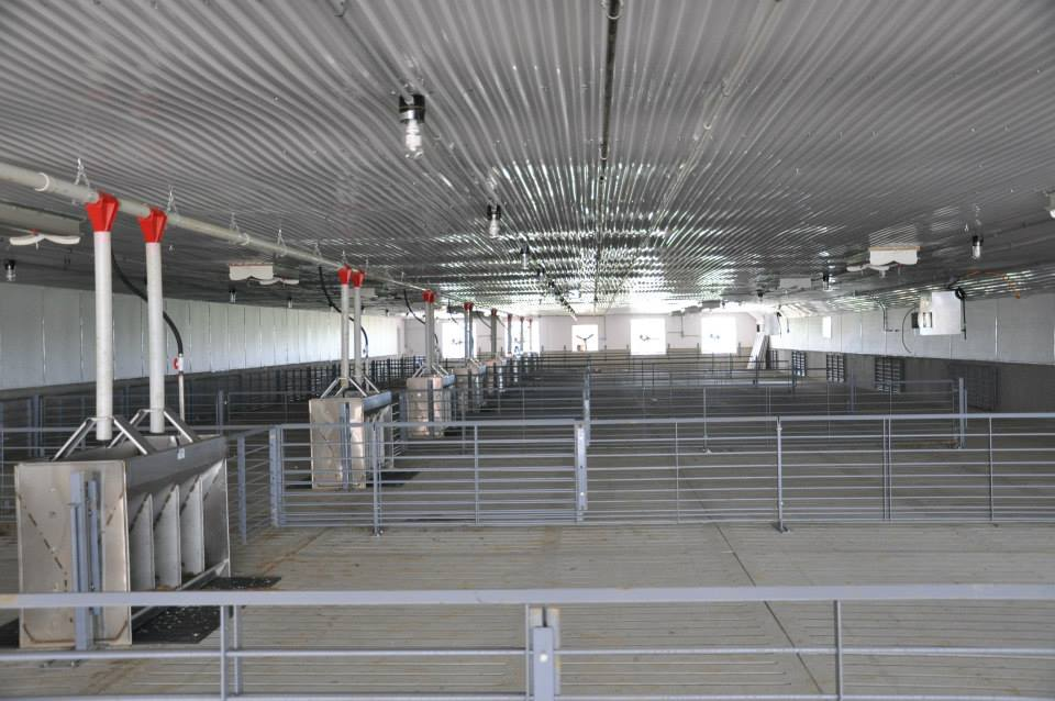 New Modern Concepts Completes ISU Cyclone Inspired Finishing Barn