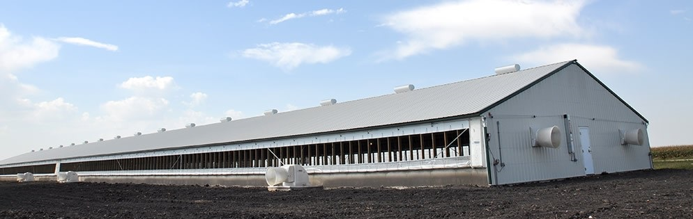 New Swine Barns New Modern Concepts